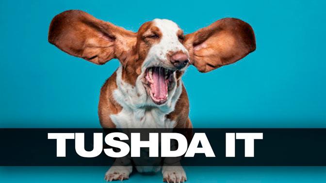 tushda-it-q
